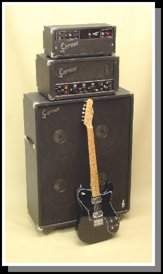BTO Lead Head w/Herzog on BTO Lead 4x12 Cab and Garnet Tele