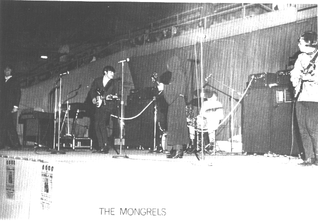 """The Mongrels&quot"